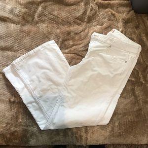 Aeropostle corduroy pants